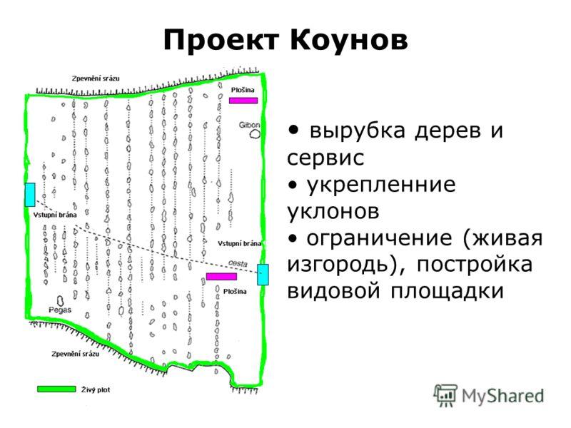 Проект Коунов вырубка дерев и сервис укрепленние уклонов ограничение (живая изгородь), постройка видовой площадки