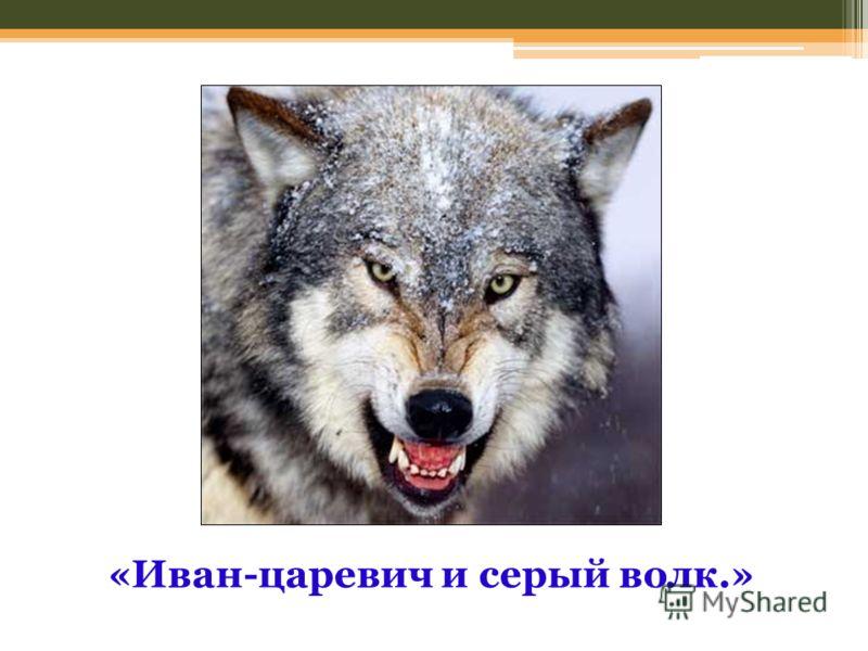 «Иван-царевич и серый волк.»