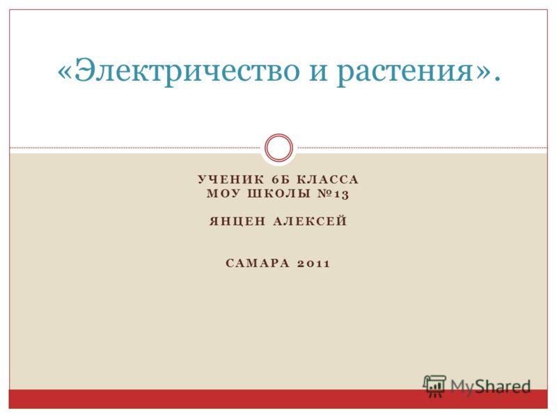 УЧЕНИК 6Б КЛАССА МОУ ШКОЛЫ 13 ЯНЦЕН АЛЕКСЕЙ САМАРА 2011 «Электричество и растения».