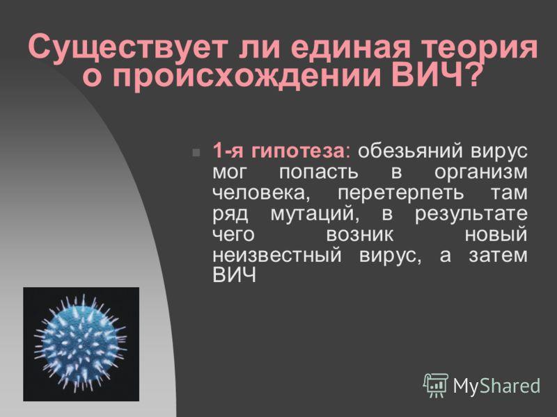 Существует ли единая теория о происхождении ВИЧ? 1-я гипотеза: обезьяний вирус мог попасть в организм человека, перетерпеть там ряд мутаций, в результате чего возник новый неизвестный вирус, а затем ВИЧ
