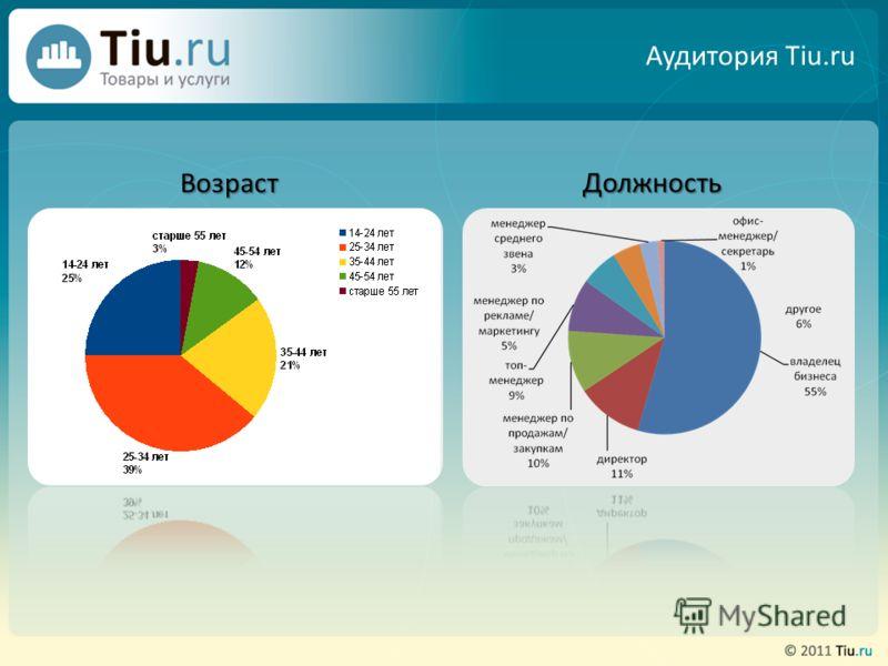 Аудитория Tiu.ru Возраст Должность