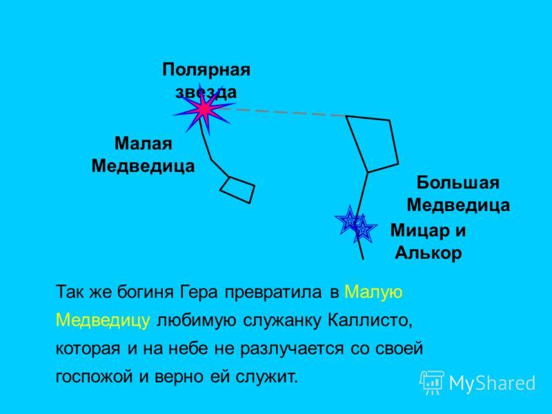 Полярная звезда Малая Медведица Большая Медведица Мицар и Алькор Так же богиня Гера превратила в Малую Медведицу любимую служанку Каллисто, которая и на небе не разлучается со своей госпожой и верно ей служит.