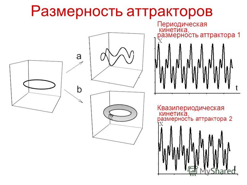 Размерность аттракторов Квазипериодическая кинетика, размерность аттрактора 2 Периодическая кинетика, размерность аттрактора 1