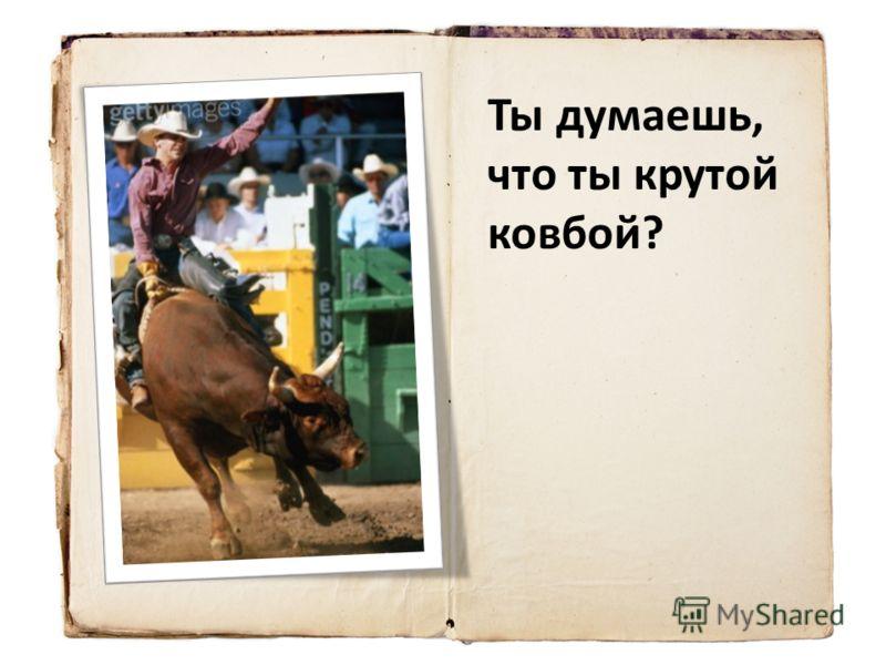Ты думаешь, что ты крутой ковбой?