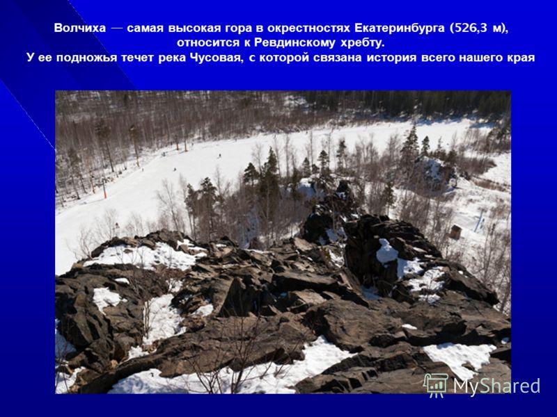 Волчиха самая высокая гора в окрестностях Екатеринбурга (526,3 м ), относится к Ревдинскому хребту. У ее подножья течет река Чусовая, c которой связана история всего нашего края