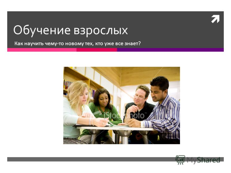 Обучение взрослых Как научить чему-то новому тех, кто уже все знает?