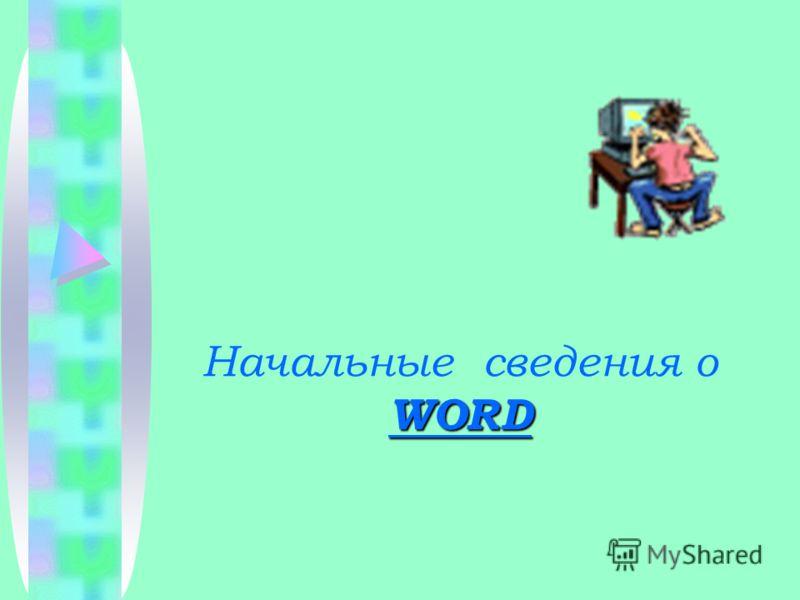 WORD Начальные сведения о WORD