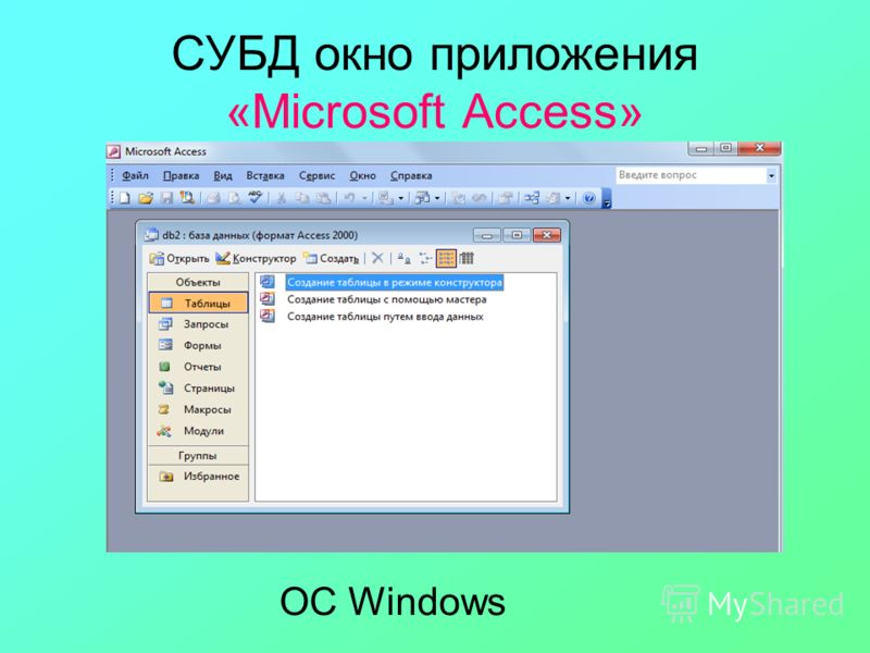 СУБД окно приложения «Microsoft Access» ОС Windows