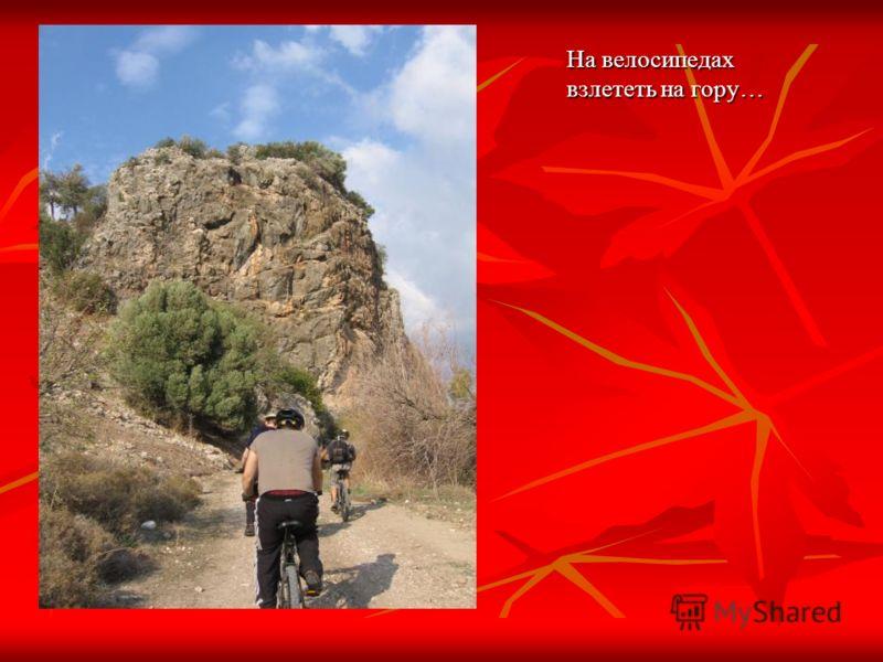 На велосипедах взлететь на гору…