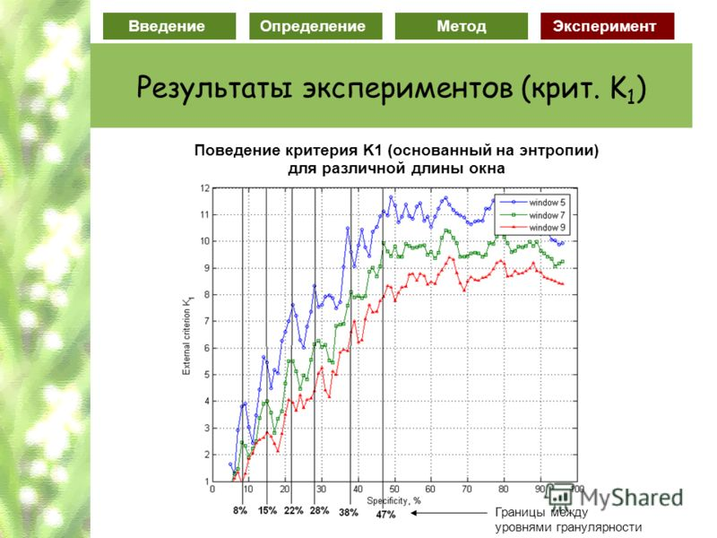 ВведениеОпределение МетодЭксперимент Результаты экспериментов (крит. K 1 ) Поведение критерия K1 (основанный на энтропии) для различной длины окна Границы между уровнями гранулярности