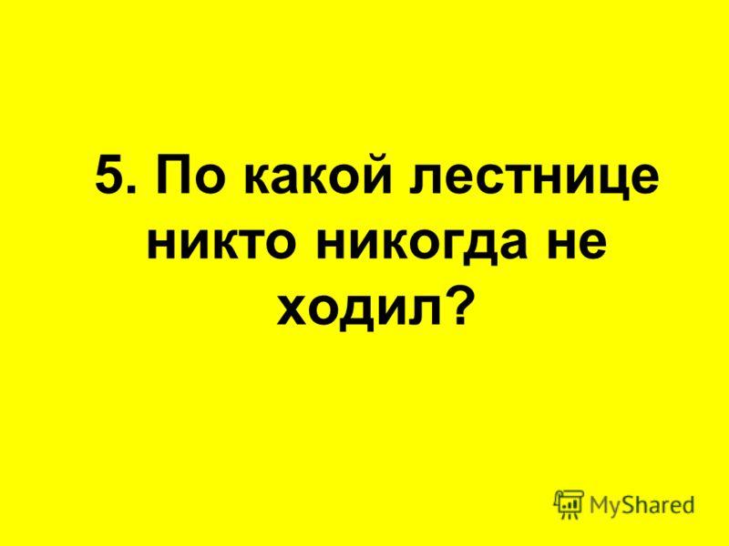5. По какой лестнице никто никогда не ходил?
