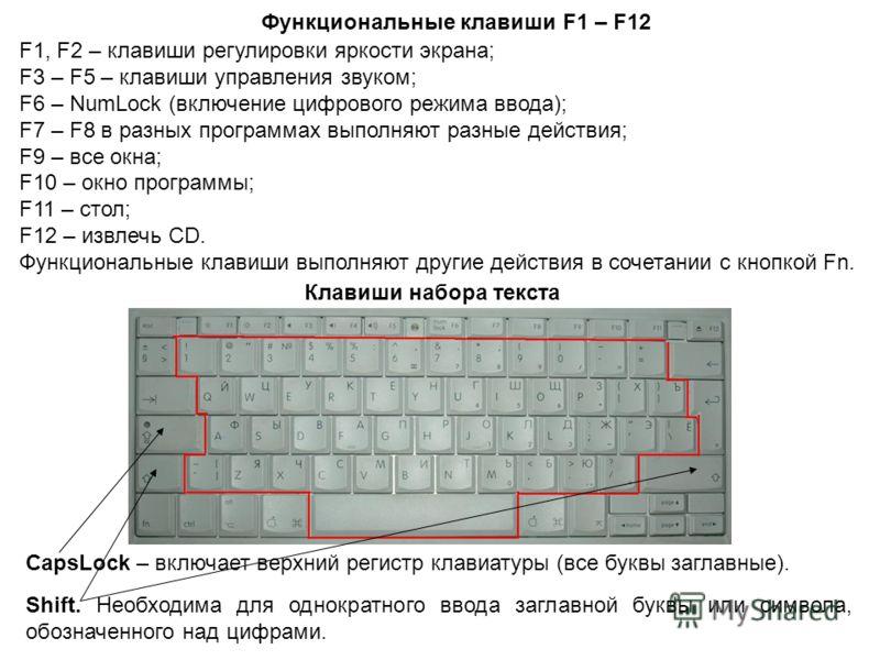 F1, F2 – клавиши регулировки яркости экрана; F3 – F5 – клавиши управления звуком; F6 – NumLock (включение цифрового режима ввода); F7 – F8 в разных программах выполняют разные действия; F9 – все окна; F10 – окно программы; F11 – стол; F12 – извлечь C
