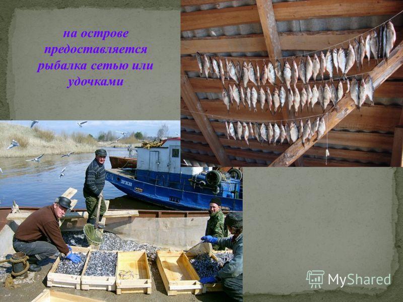 на острове предоставляется рыбалка сетью или удочками