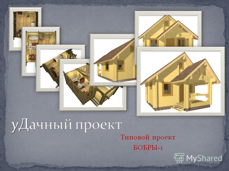 Типовой проект БОБРЫ-1