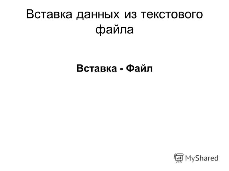 Вставка данных из текстового файла Вставка - Файл