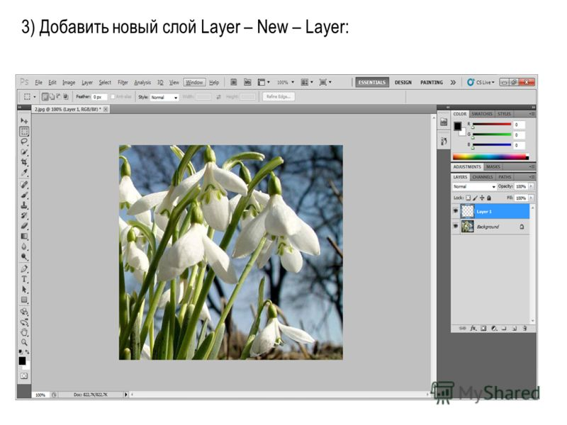 3) Добавить новый слой Layer – New – Layer: