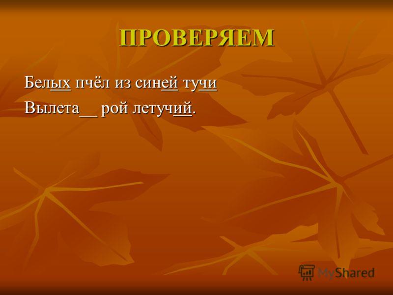 ПРОВЕРЯЕМ Белых пчёл из синей тучи Вылета__ рой летучий.