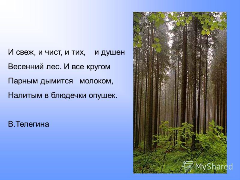 И свеж, и чист, и тих, и душен Весенний лес. И все кругом Парным дымится молоком, Налитым в блюдечки опушек. В.Телегина