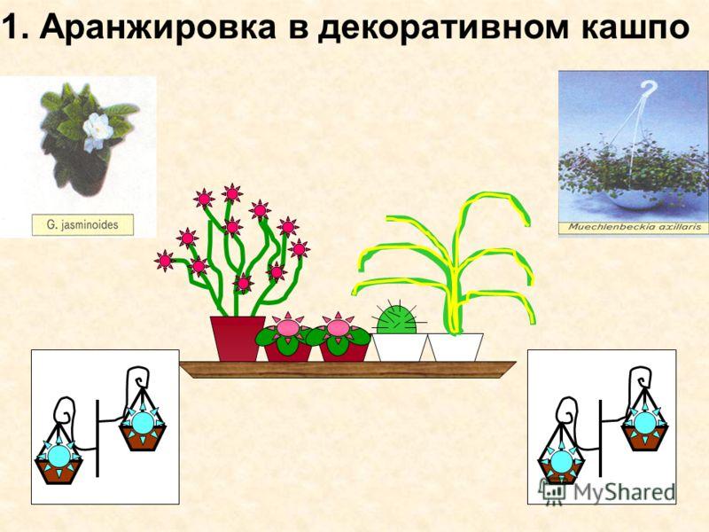 1. Аранжировка в декоративном кашпо