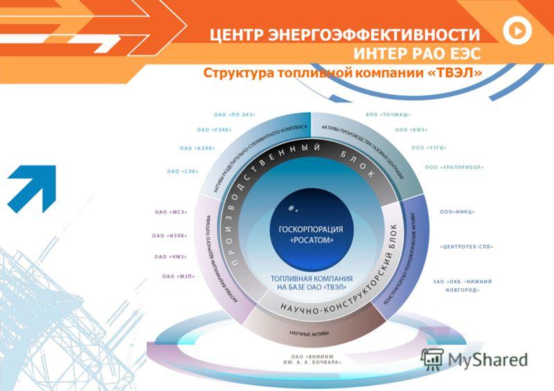 ЦЕНТР ЭНЕРГОЭФФЕКТИВНОСТИ ИНТЕР РАО ЕЭС Структура топливной компании «ТВЭЛ»