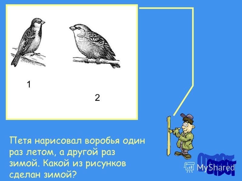 Петя нарисовал воробья один раз летом, а другой раз зимой. Какой из рисунков сделан зимой? 1 2