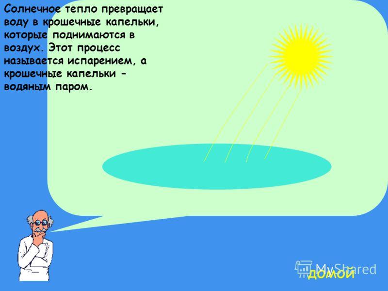 Солнечное тепло превращает воду в крошечные капельки, которые поднимаются в воздух. Этот процесс называется испарением, а крошечные капельки - водяным паром. домой