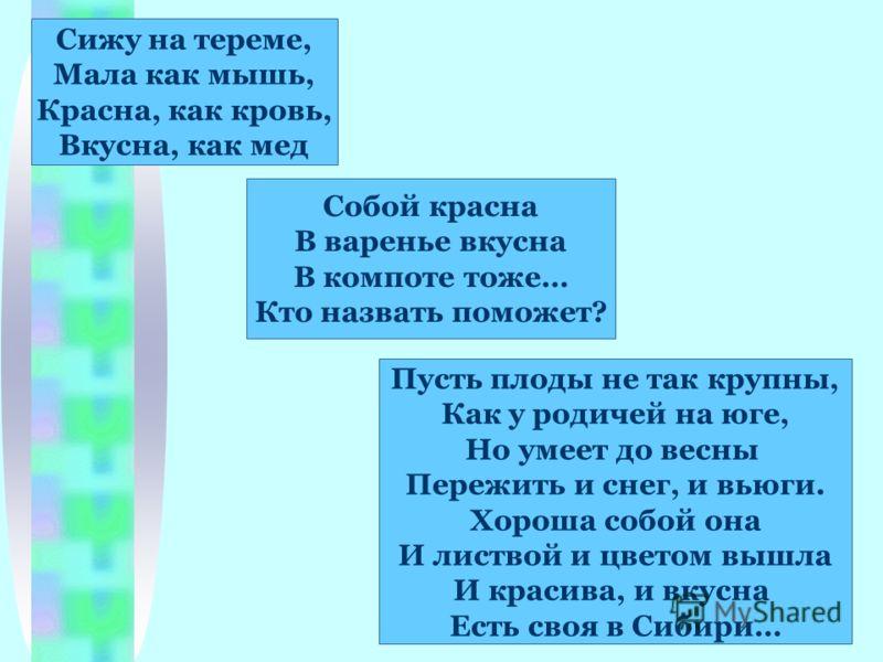 Сижу на тереме, Мала как мышь, Красна, как кровь, Вкусна, как мед Пусть плоды не так крупны, Как у родичей на юге, Но умеет до весны Пережить и снег, и вьюги. Хороша собой она И листвой и цветом вышла И красива, и вкусна Есть своя в Сибири… Собой кра