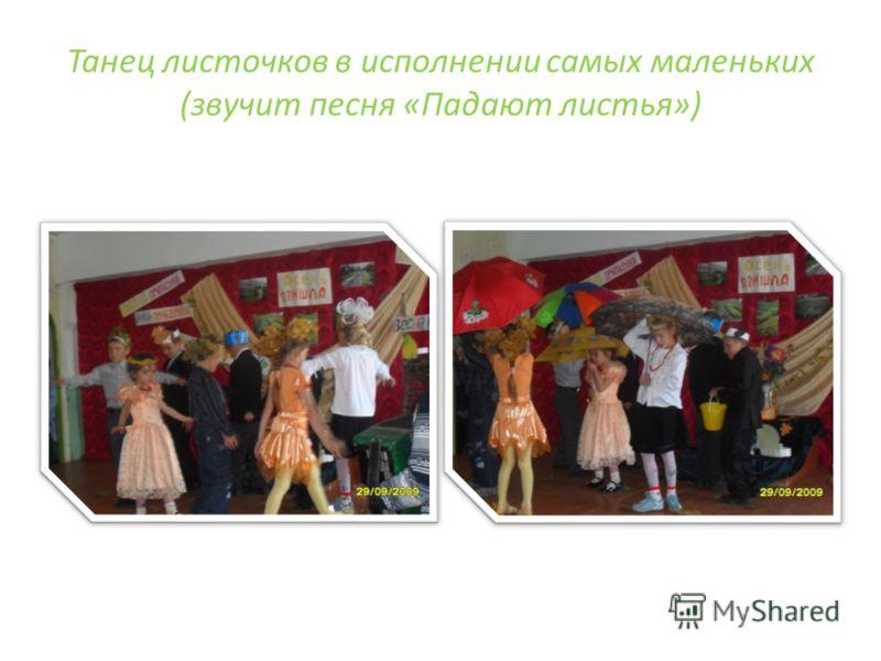 Танец листочков в исполнении самых маленьких (звучит песня «Падают листья»)
