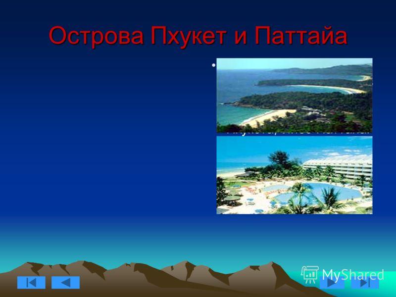Острова Пхукет и Паттайа Мы предлагаем вам разместится в одном из комфортабельных отелей либо острова Пхукета, либо Паттайа. Оба места знамениты своими сказочными пляжами и волшебной природой