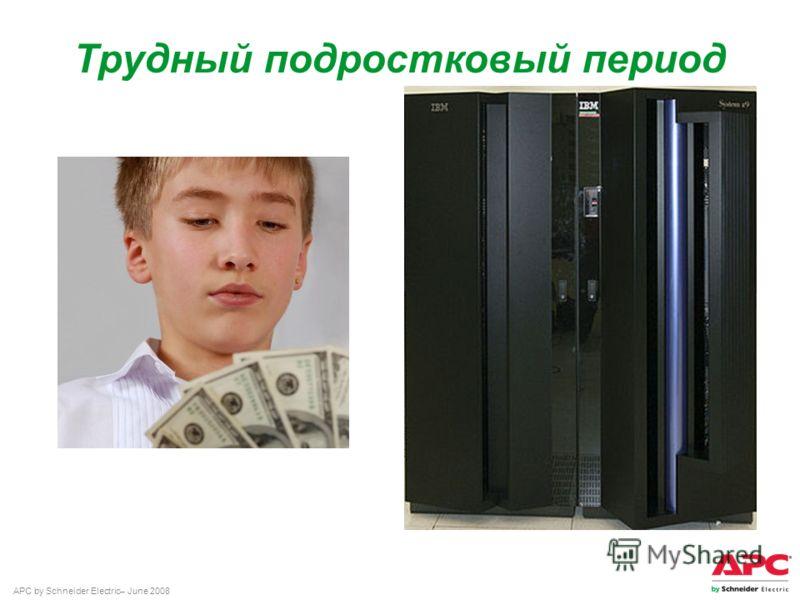 APC by Schneider Electric– June 2008 Трудный подростковый период