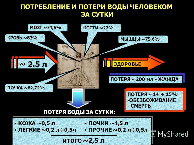 ПОТЕРЯ ~200 мл - ЖАЖДА ПОТЕРЯ ~14 ÷ 15% -ОБЕЗВОЖИВАНИЕ - СМЕРТЬ ПОТЕРЯ ~14 ÷ 15% -ОБЕЗВОЖИВАНИЕ - СМЕРТЬ ~ 2.5 л ПОТРЕБЛЕНИЕ И ПОТЕРИ ВОДЫ ЧЕЛОВЕКОМ ЗА СУТКИ ЗДОРОВЬЕ КОСТИ ~22% МОЗГ ~74,5% ПОТЕРЯ ВОДЫ ЗА СУТКИ: КОЖА ~0,5 л ЛЕГКИЕ ~0,2 л÷0,5л ПОЧКИ ~