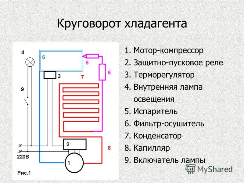 Круговорот хладагента 1.Мотор-компрессор 2.Защитно-пусковое реле 3.Терморегулятор 4.Внутренняя лампа освещения 5.Испаритель 6.Фильтр-осушитель 7.Конденсатор 8.Капилляр 9.Включатель лампы