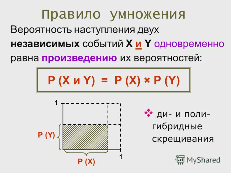 Правило умножения Вероятность наступления двух независимых событий X и Y одновременно равна произведению их вероятностей: P (X и Y) = P (X) × P (Y) ди- и поли- гибридные скрещивания P (X) P (Y) 1 1