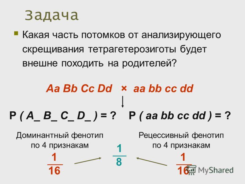 Задача Какая часть потомков от анализирующего скрещивания тетрагетерозиготы будет внешне походить на родителей? Аa Вb Cc Dd × аа bb cc dd Р ( А_ В_ C_ D_ ) = ? Р ( аа bb cc dd ) = ? Доминантный фенотип по 4 признакам Рецессивный фенотип по 4 признака