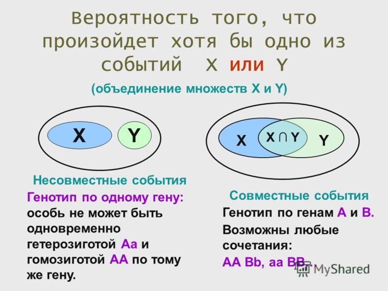 Вероятность того, что произойдет хотя бы одно из событий X или Y XY XY X Y (объединение множеств X и Y) Несовместные события Генотип по одному гену: особь не может быть одновременно гетерозиготой Аа и гомозиготой АА по тому же гену. Совместные событи