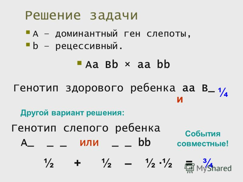 Решение задачи А – доминантный ген слепоты, b – рецессивный. Аа Вb × aa bb Генотип здорового ребенка аа В_ и ¼ Генотип слепого ребенка А_ _ _ или _ _ bb Другой вариант решения: События совместные! ½ + ½ – ½ ½ = ¾