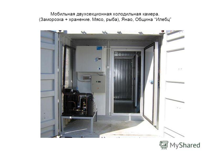 Мобильная двухсекционная холодильная камера. (Заморозка + хранение. Мясо, рыба), Янао, Община Илебц