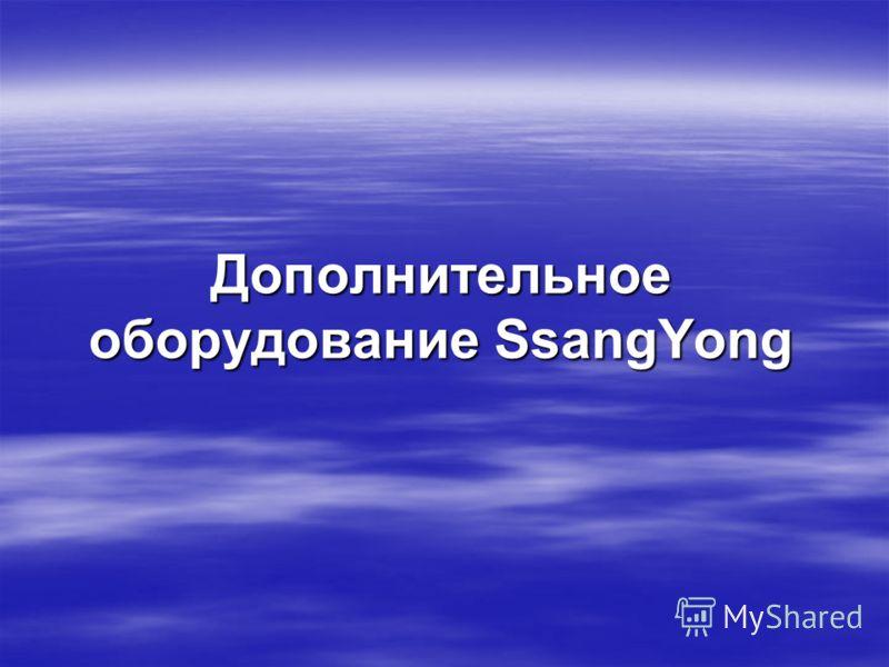 Дополнительное оборудование SsangYong