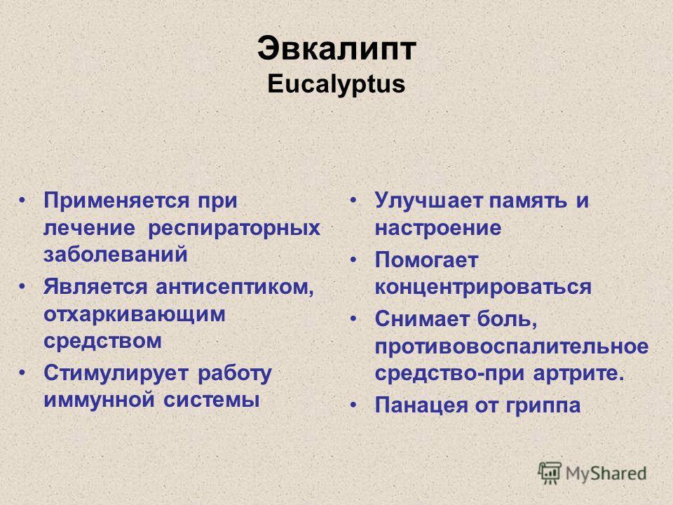 Эвкалипт Eucalyptus Применяется при лечение респираторных заболеваний Является антисептиком, отхаркивающим средством Стимулирует работу иммунной системы Улучшает память и настроение Помогает концентрироваться Снимает боль, противовоспалительное средс