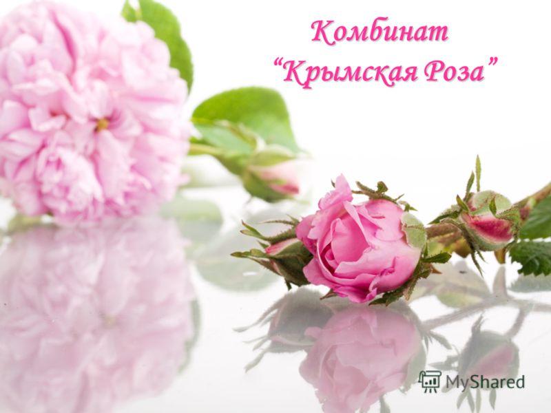 Комбинат КрымскаяРоза Комбинат Крымская Роза