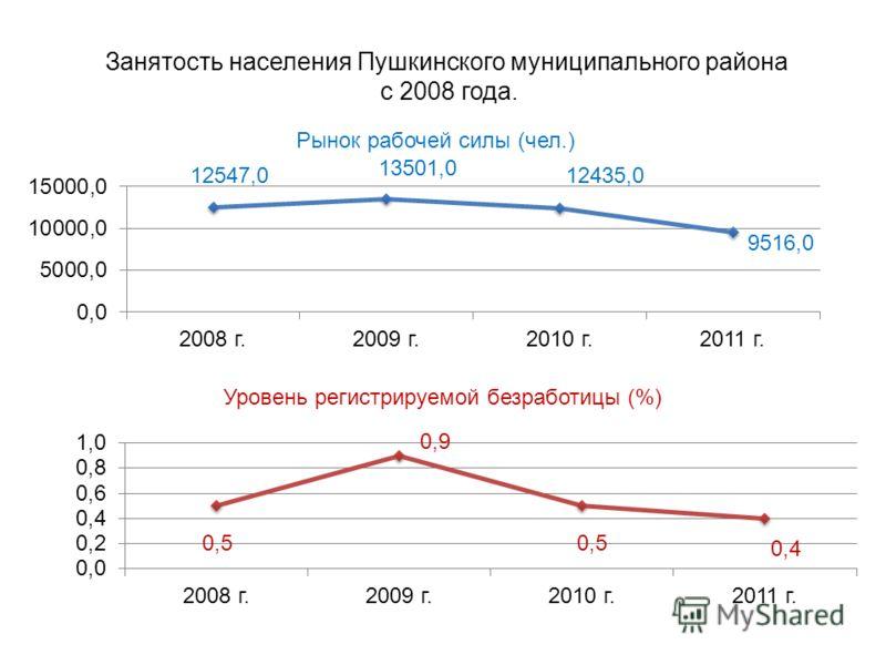 Занятость населения Пушкинского муниципального района с 2008 года.