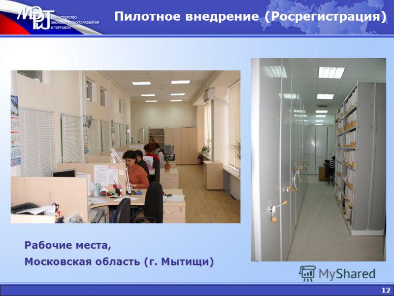 12 Пилотное внедрение (Росрегистрация) Рабочие места, Московская область (г. Мытищи)