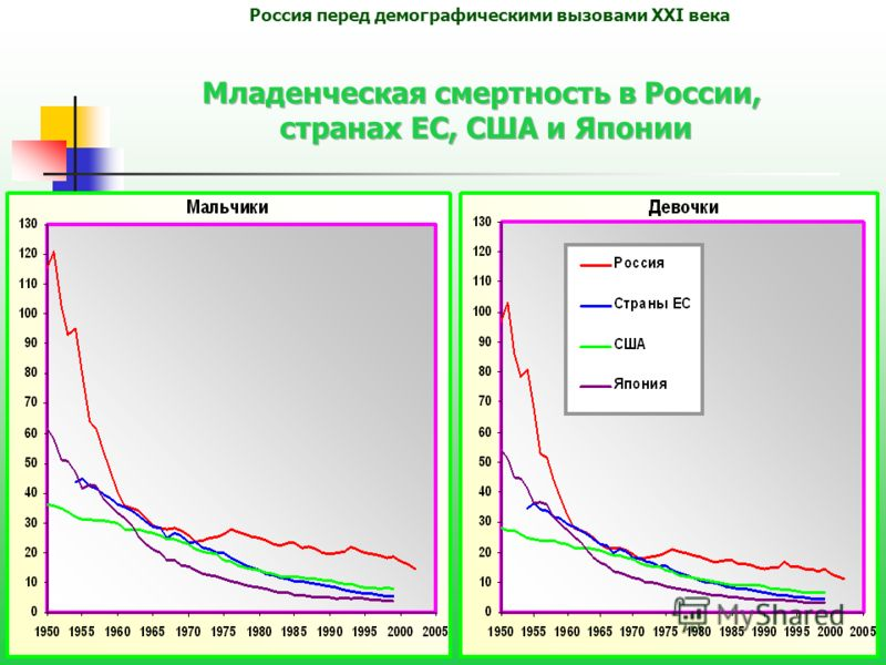 7 Россия перед демографическими вызовами XXI века
