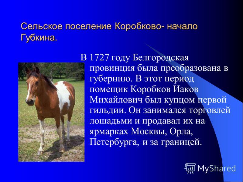 Сельское поселение Коробково- начало Губкина. В 1727 году Белгородская провинция была преобразована в губернию. В этот период помещик Коробков Иаков Михайлович был купцом первой гильдии. Он занимался торговлей лошадьми и продавал их на ярмарках Москв