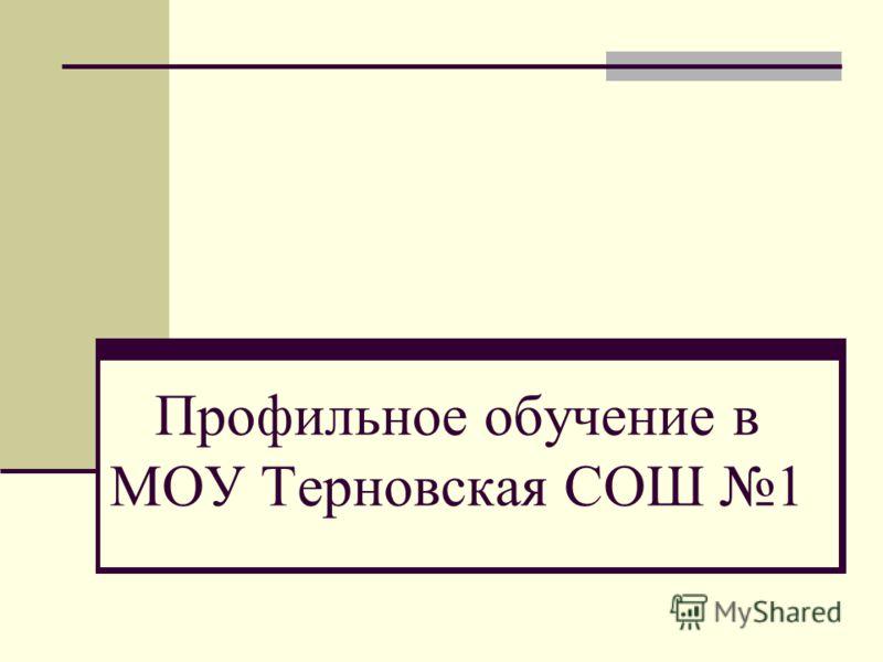 Профильное обучение в МОУ Терновская СОШ 1