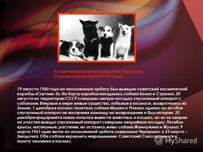 19 августа 1960 года на околоземную орбиту был выведен советский космический корабль «Спутник-5». На борту корабля находились собаки Белка и Стрелка. 20 августа на территории СССР совершил мягкую посадку спускаемый аппарат с собаками. Впервые в мире