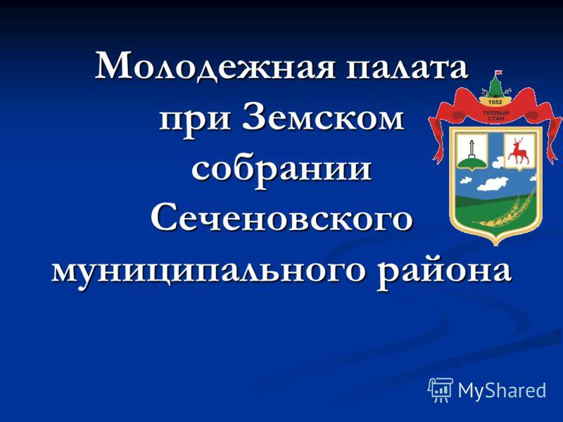 Молодежная палата при Земском собрании Сеченовского муниципального района