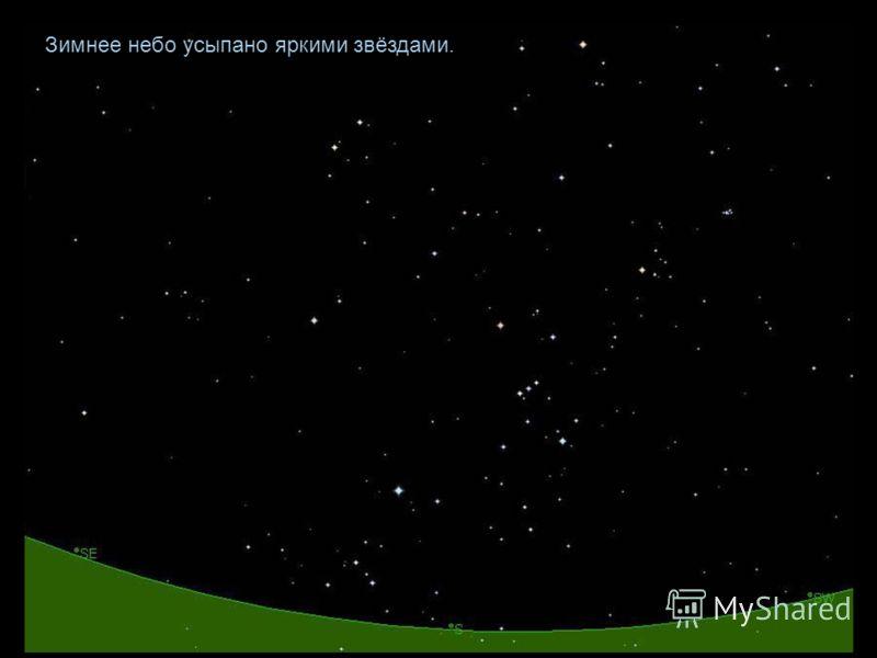 Зимнее небо усыпано яркими звёздами.