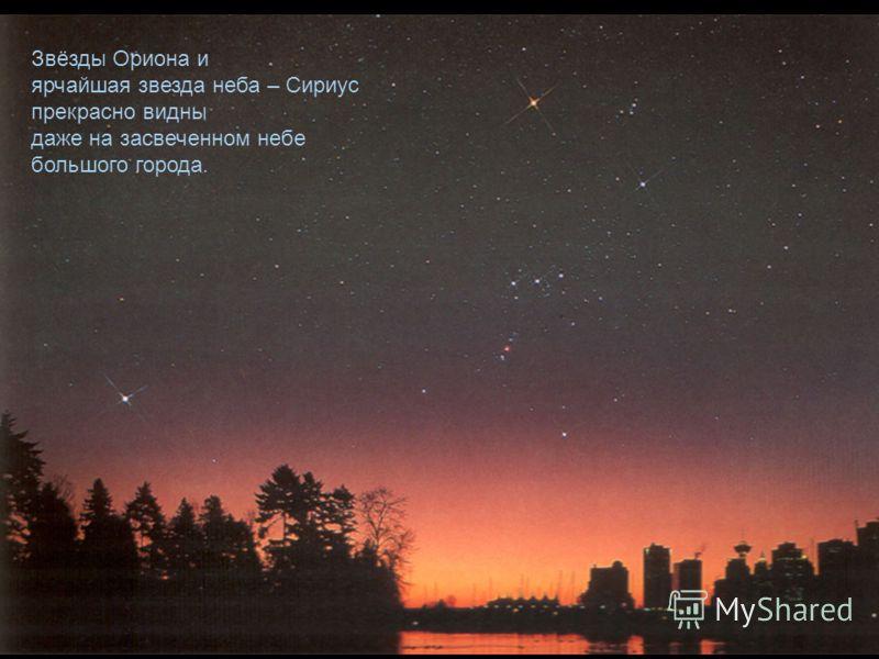 Звёзды Ориона и ярчайшая звезда неба – Сириус прекрасно видны даже на засвеченном небе большого города.