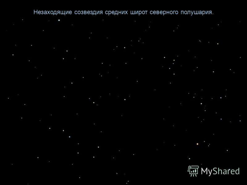 Незаходящие созвездия средних широт северного полушария.